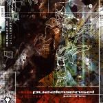 Puzzleweasel – Juxtaflex CD
