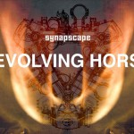 Synapscape – Revolving Horse video